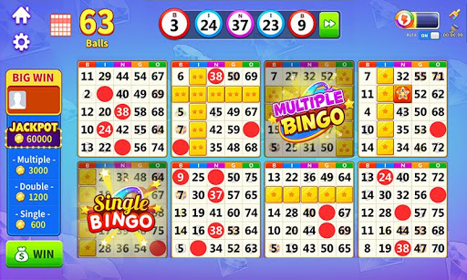 Bingo Lucky Bingo Games Free to Play at Home 1.5.2 screenshots n 7