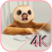 Free Download  Sloth Office Live Wallpaper 2.0 APK